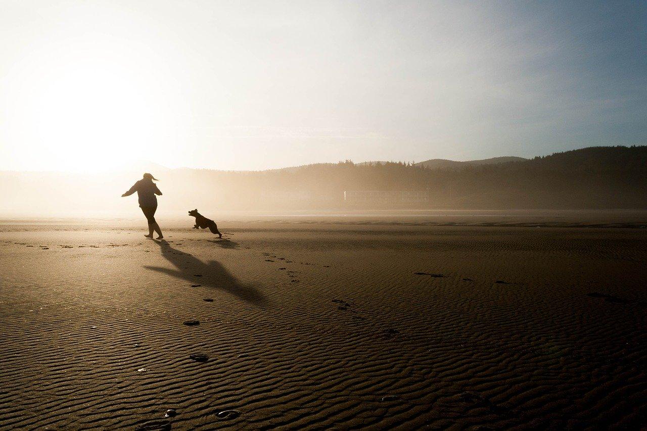 Hardlopen met je hond